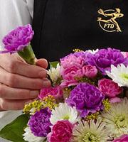Clifton Park flowers