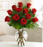 one dozen elegant red roses