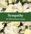 All White Easel Spray