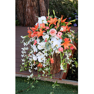 Peach Bellini Ceremony Flowers