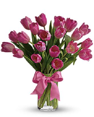 Tender Tulips Pink