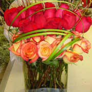 Artistic Two Dozen Multi Color Roses