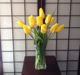 Joyful Yellow Tulips