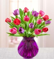 Tulips of your love