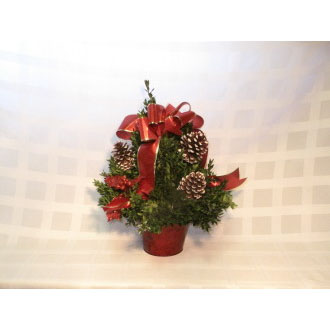Small Boxwood Tree-Red Ribbon with Pine Cones