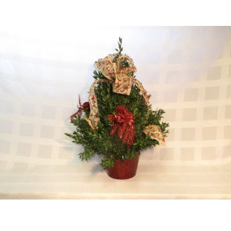 Large Boxwood Tree-Red and Gold Ribbon