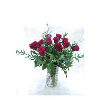 12 50cm Red Roses