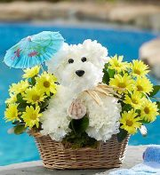 RUTH MESSMER FLORIST BEACH DOG