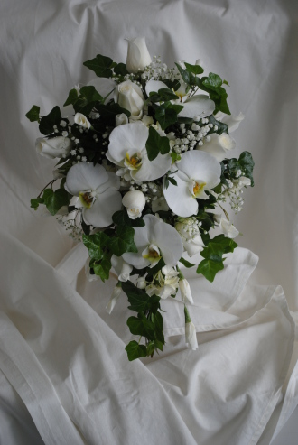 GW-Whiteorchidbride