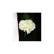 WHITECARNATION BOUTONNIERE