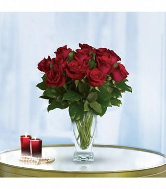 Standard Red Dozen Roses