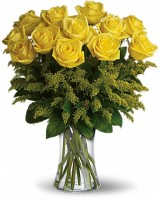 Romanesque Yellow Roses