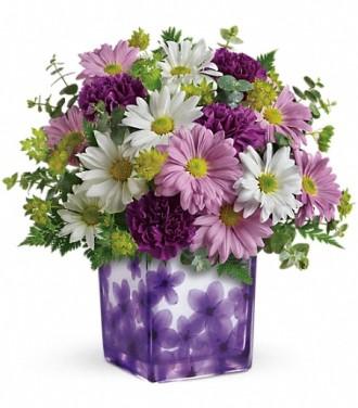 Teleflora\'s Dancing Violets Bouquet