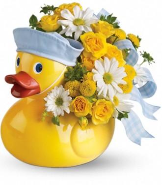 Teleflora\'s Ducky Delight - Boy