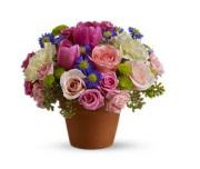 Teleflora�s Spring Sonata Bouquet