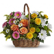 Teleflora�s Sweet Tranquility Basket