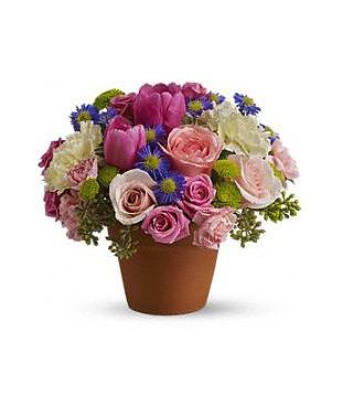Teleflora's Spring Sonata Bouquet