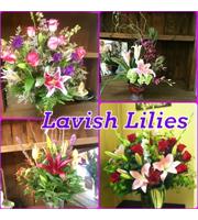 Lashing Lilies