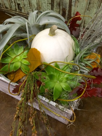 Farm Harvest Box