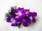 Heritage House Custom Wrist Corsage-All Verigated Dendrobium Orchids
