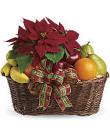 Fruit & Pointsettia Basket