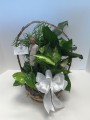 9 INCH PLANTER WITH A WILLOW TREE ANGEL