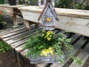 Birdhouse Plant Garden