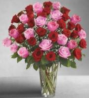 BLM Ultimate Elegance 4 DZ Long Stem Red and Pink Roses