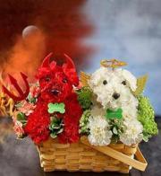 BLM Devil Dog And Angel Dog