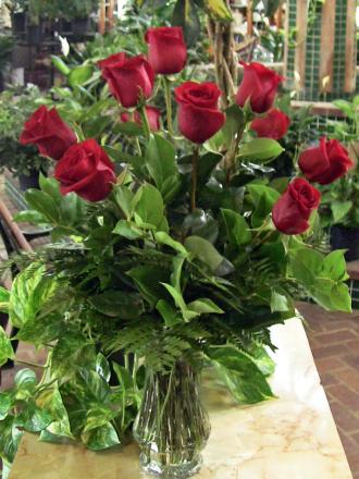 Dalton\'s Roses