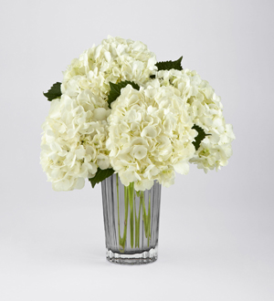 The FTD® Ivory Hydrangea Bouquet by Vera Wang