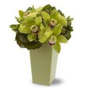 Autumn Green Orchid Vase Bqt