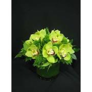 Autumn Green Orchid Centerpiece Bqt
