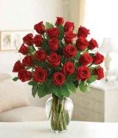 30 Vased Roses
