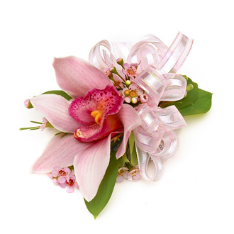 Pink Cymbidium Orchid With Filler & Bow