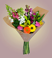 NEW! Pick Of The Day! Grower's Express Bunch