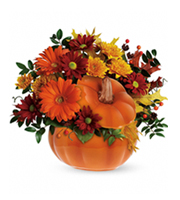 Flowers By Bauers Country Pumpkin