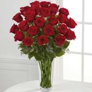 Valentine's Special - 2 Dozen Roses