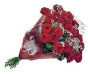 2 dozen wrapped red roses