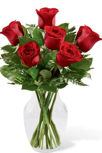 Half_Dozen_Roses