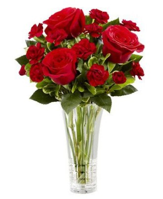 Red Roses & Red Carnations Bouquet