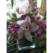 Lovely orchids cube