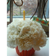 CRICKETS FLOWERS CUP CAKE