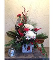 Crickets Christmas Cardinal