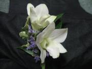 Double Dendrobium Orchid Boutonniere
