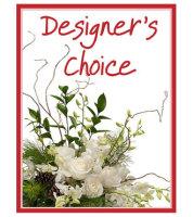 Designers Choice - Winter