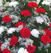 Sympathy Arrangement Traditional Styled Florist Designed