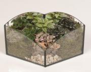 Garden Terrarium