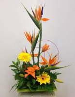 BIRD OF PARADISE UPSCALE FLOWER ARRANGEMENT