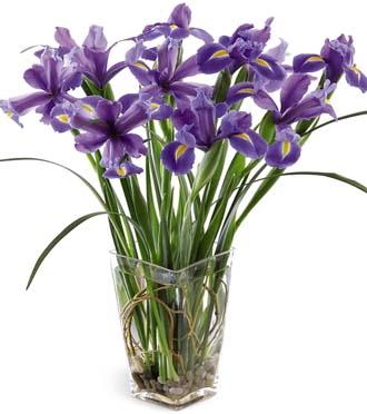 Beautiful Iris Bouquet